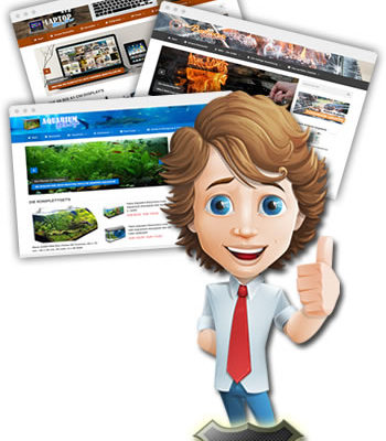 Video Press Portal
